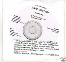 (C270) Enjoy Destroy, And For What - DJ CD