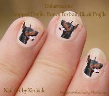 DOBERMANN HEAD, ritagliato orecchie, Doberman Pinscher 24 DOG NAIL ART ADESIVI DECALCOMANIE