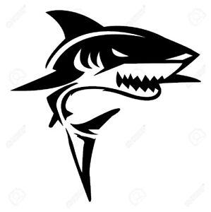 Shark sticker car laptop motorcycle etc
