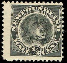 Scott # 58 - 1894 - ' Newfoundland Dog '