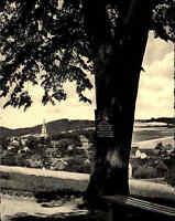 Wehrsdorf Oberlausitz DDR s/w AK 1959 Gesamtansicht Baum mit Tafel Bank Panorama