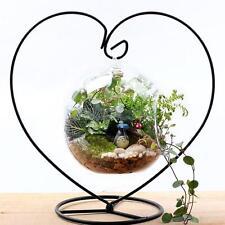 Iron Hanging Glass Plant Flowers Vase Terrarium Stand Holder Container Decor