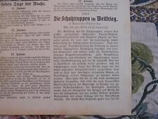 1916 die Woche 4 / Schutztruppen Türkei / Lichtenfels Korbflechtschule / Juden
