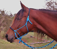 Bitless bridle/riding halter and plaited reins AQUA BLUE/BLACK,sliding chinstrap