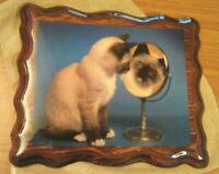 Siamese Kitten Looking in Mirror Handmade Wood Cat Art Picture Photo Artwork
