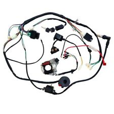 Complete Electrics 110cc Coil CDI Assembly Wire Harness For ATV BUGGY