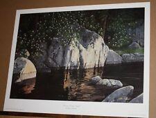 Dawn's Early Light by Tennessee Artist Steven P Spangler Black Bear Smoky Mnts