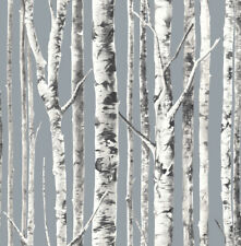 Birch Silver Trees Forest White Black Classic Nursery Double Roll Wallpaper