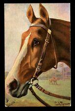 Horse artist drawn Tuck Oilette 9254 vintage PPC