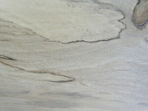"""Spalted Holly Wood Sample (1/2"""" x 3"""" x 6"""") for Collection, Crafts, Knives"""
