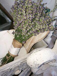 Lavendel Bund Strauß getrocknet Duft Blüten Stengel aus eigenem Bio Garten Deko*