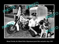 OLD LARGE HISTORIC PHOTO OF MIAMI FLORIDA, THE POLICE DOG & MOTORCYCLE c1965