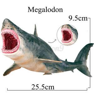 26cm Megalodon Shark Animal Model Children Kids Toy  Marine Life Child Education