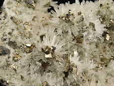 BIG AAA Cluster! with PERFECT QUARTZ Crystals & Pyrite Crystal CUBES Peru! 488gr
