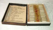 Boxed Vintage Prepared Microscope Slides/Microslides ~Czech Pathology Specimens