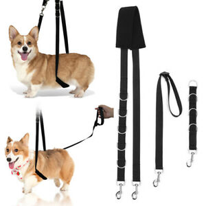 3PCS Dog Grooming Strap Pet Harness Adjustable Bathing Belt Noose Restraint