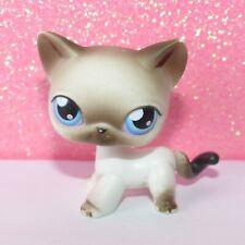 authentic LPS 5 PETSHOP 5 bis chat EUROPEEN EUROPEAN cat kitty hasbro pet shop