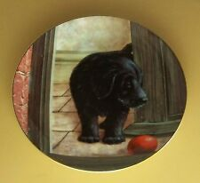 Playful Puppies Playmate Required Plate Black Lab Labrador Retriever Dog Puppy