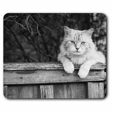 Rectangle Mouse Mat BW - Pretty Ginger Cat Print Pets Animals Fun  #41060
