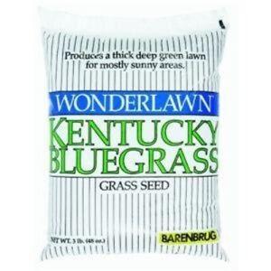 Barenbrug USA 50203 Kentucky Bluegrass Grass Seed