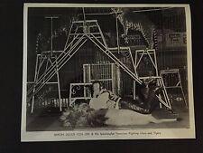 RARE VINTAGE CIRCUS ACT: Lion Tamer Baron Julius Von Uhl Photo