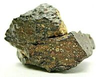Meteorite Carbonaceous CV3 officially classified & approved from outer space