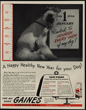 1946 Cute ENGLISH BULLDOG Puppy Loves GAINES Dog Food VINTAGE AD