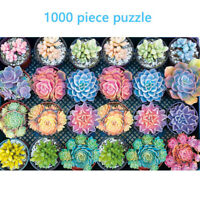 Succulent Plants 1000 Piece Adult Children Puzzle Holiday Gift Toy 1mm Thick
