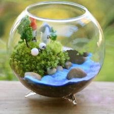 1 Pieces Flower Vase Plants Hydroponic Pot Holder Ball Shaped Fish Tank