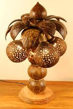 50cm XL noix de coco Lampe PALME lumière Thaïlande Lampadaire GRAND BOIS