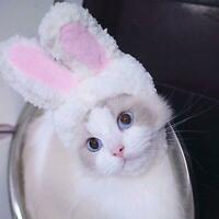 Cat Bunny Rabbit Ears Hat Cap Pet Cosplay Costumes for Cat Small Dogs Party