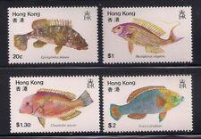 Hong Kong   1980  Sc #369-72  Fishes  MNH  (2170)