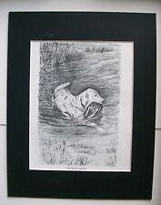Golden Retriever Dog Duck Print Gladys Emerson Cook Bookplate 1962 11x14 Matted