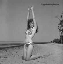 Bunny Yeager Pinup Camera Negative Beautiful Sue James Brunette Bikini Model