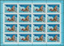 RUSSIA 2008 Sc# 7110 Full Sheet, Shuvalov Swimming School, Cent., MNH