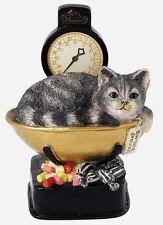 James Herriot Sweet Dreams Border Fine Art Cat Ornament Figurine (A25076) NEW