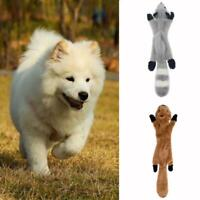 Stuffingless Pet Dog Toys Stuffing Free Dog Chew Toys Set with Squirrel