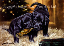 Cute Labrador Christmas cards pack of 10. Dog cards C188X