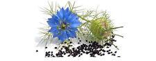 Graines De Nigelle Cumin noir de culture bio 200 graines bio