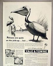 Yale & Towne Industrial Truck PRINT AD - 1953 ~~ pelican's beak comparison