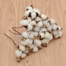 10x Natural Dried Cotton Artificial Plants Flowers Branch For Home Wedding Decor