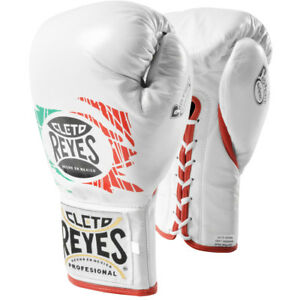 Cleto Reyes Safetec Professional Boxing Fight Gloves - Mexican Flag