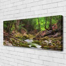 Leinwand-Bilder Wandbild Canvas Kunstdruck 125x50 Wald Natur