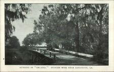Autoing in Arcadia - Near Lafayette LA c1905 Postcard