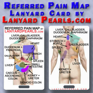 Referred Visceral Pain Map Lanyard Reference Card