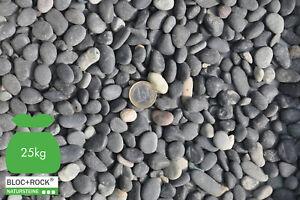 20 kg Vulkano Edelkiesel Zierkiesel Kieselstein Kiesel Beach Pebbles frei Haus