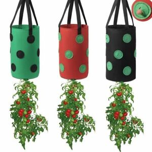 3 Piece Strawberry Grow Bag Nonwoven Fabric Vertical Garden Hanging Planter Vege