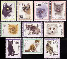 Cats Polish Stamps