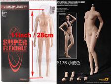 TBLeague PLMB2016-S17B 1/6 Flexible Medium Chest Suntan Female Seamless Body