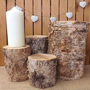 Large Birch Tree Bark Log Stump Christmas Wedding Centrepiece Decoration Display